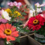 Fiori al dettaglio per composizioni floreali