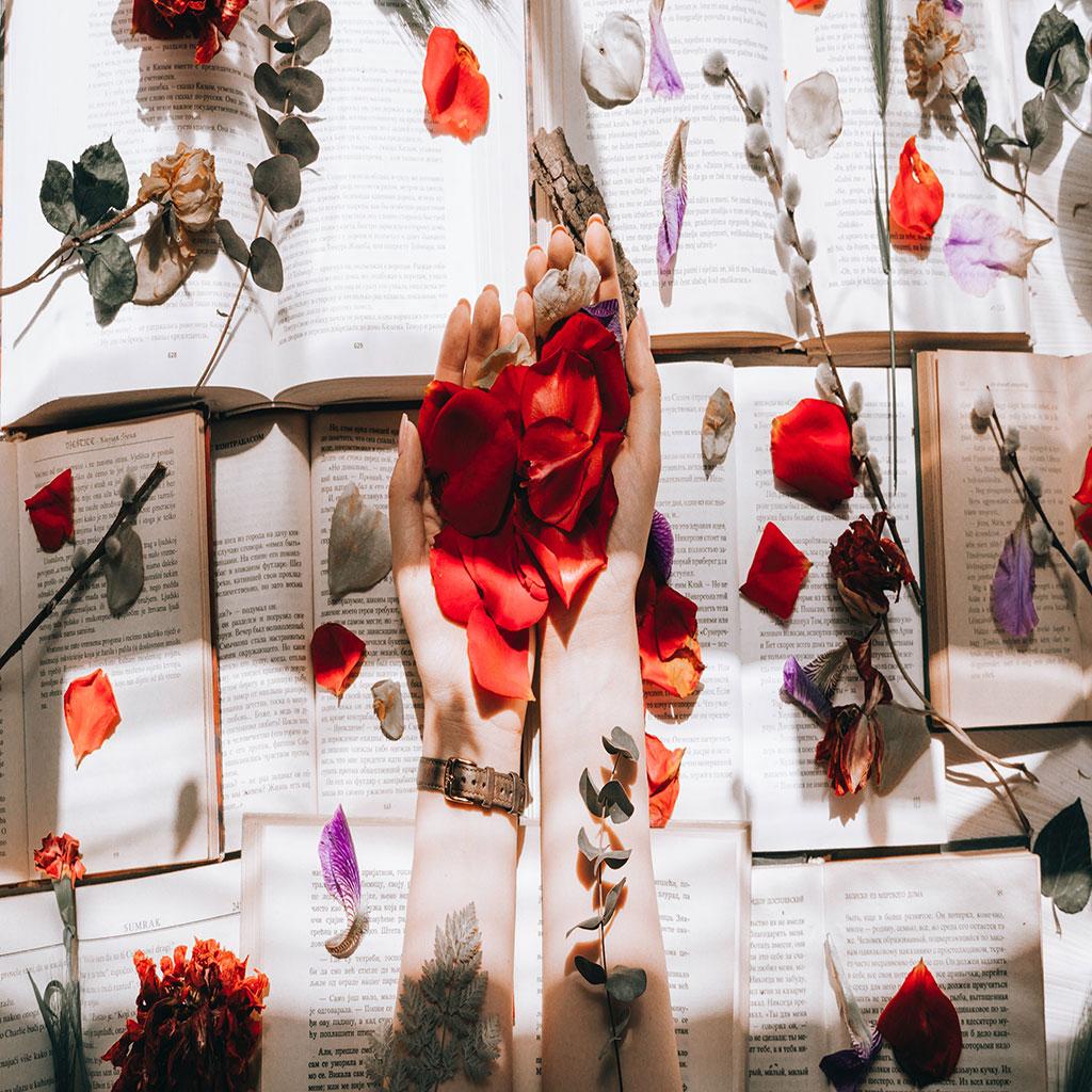 che fiori regalare alla ragazza che mi piace
