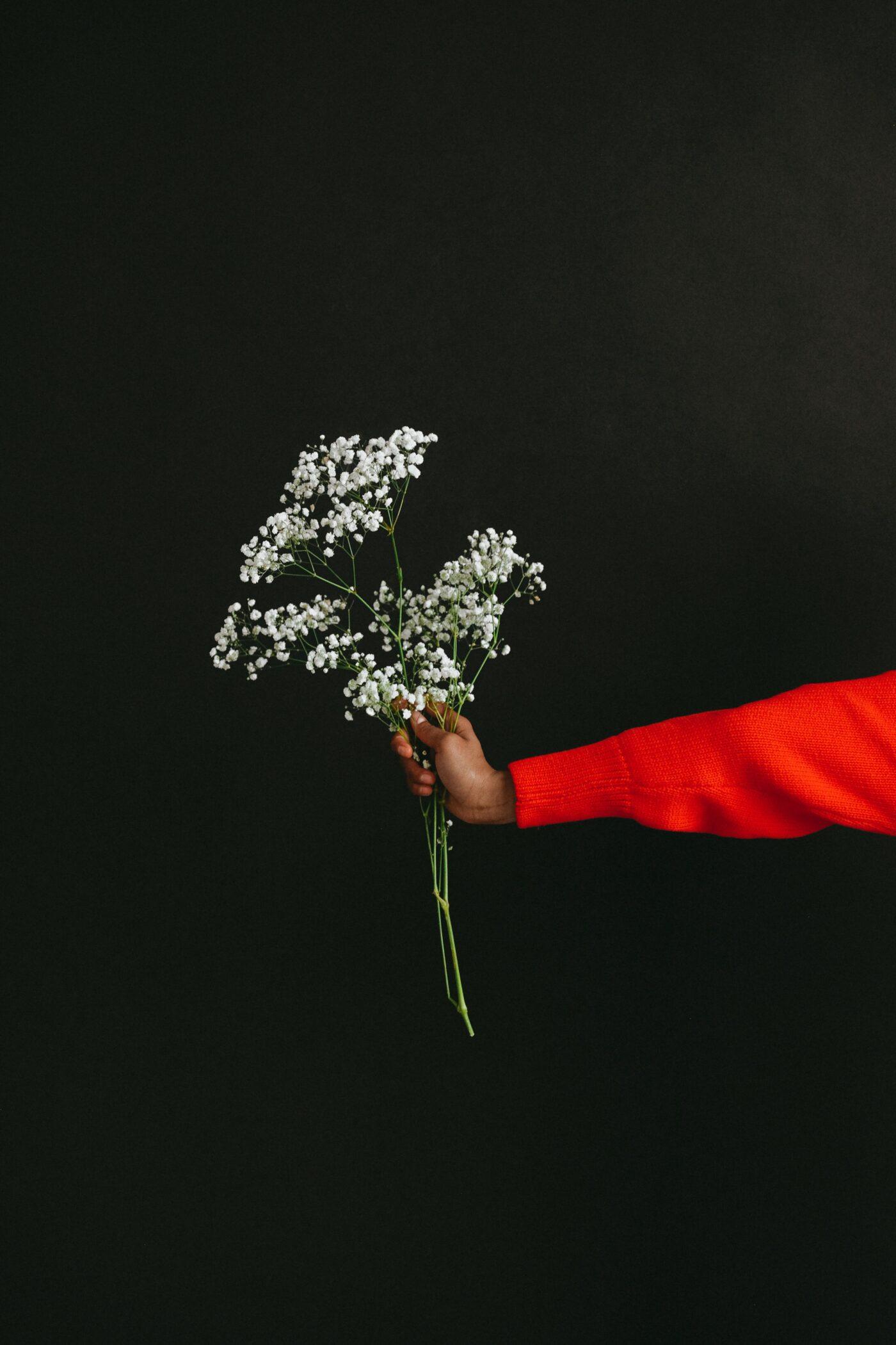 ordinare fiori a domicilio
